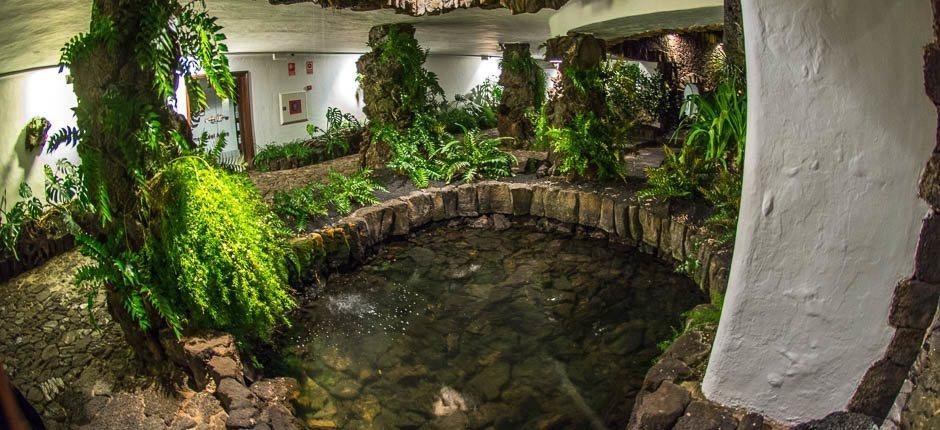 Jameos del Agua. Museums and tourist centres of Lanzarote