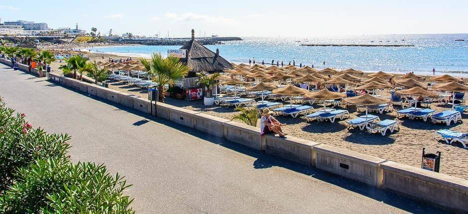 Fañabé, Family beaches in Tenerife